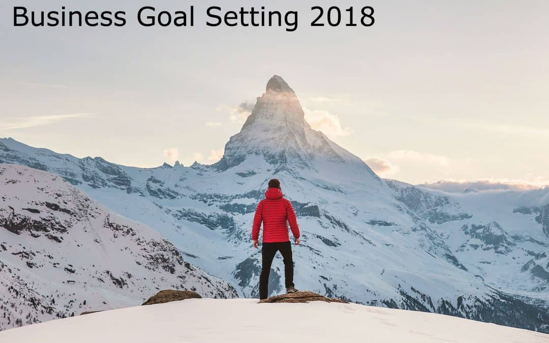 Business Goal Setting 2018